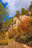 Région sauvage de montagne de Jante-selle de canyon-n d'AZ_Grand Image libre de droits