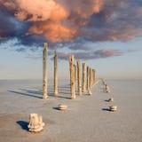 Région sauvage de sel. photos libres de droits