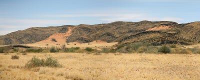 Région sauvage en Namibie Images stock