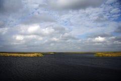 Région sauvage subtropicale Images stock