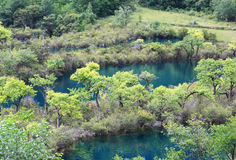 Région scénique de Jiuzhaigou Photographie stock libre de droits