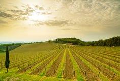Région, vignoble, arbres et ferme de chianti sur le coucher du soleil. La Toscane, Italie images stock