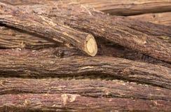 Réglisse en bâton - glabra de Glycyrrhiza photographie stock