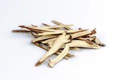 Réglisse, réglisse (glabra de Glycyrrhiza) Photographie stock