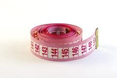 Réguas nos centímetros e nos milímetros Imagem de Stock
