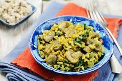 Répand le riz brun de safran des indes d'épinards photos libres de droits