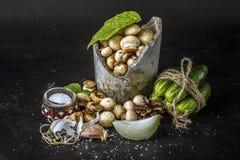 Répand les champignons frais dans un pot concret image libre de droits