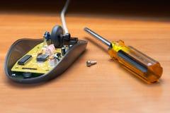 Réparation de la souris d'ordinateur. Photos libres de droits