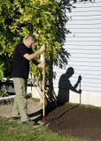 Réparation de pelouse - ensemencement de habillage supérieur et d'herbe Photos libres de droits