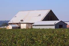 Réparation du toit de grange Photographie stock
