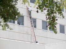 Réparations de bâtiment Photos libres de droits