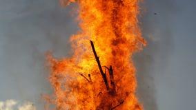 Réprimande la flamme d'un grand feu le soir contre le ciel banque de vidéos