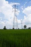 Réseau électrique de ciel bleu et d'hydromel vert Photo libre de droits