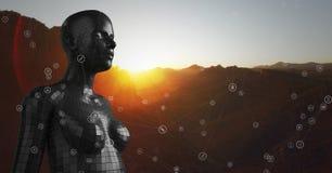 Réseau blanc contre la femelle noire AI et la montagne et le coucher du soleil Image stock