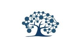 Réseau d'arbre Digital Photos libres de droits