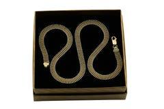 Réseau d'or de Jewelery Image stock