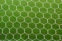 Réseau de bille de pied et herbe verte Images libres de droits