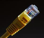 réseau local de câble Images libres de droits