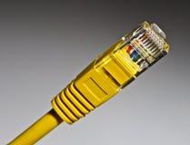 réseau local global de jonction de câble Images libres de droits
