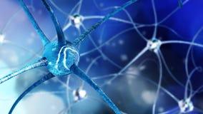 Réseau neurologique, système nerveux Photos stock