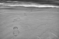 Réservation écologique Saskatchewan de grandes collines de sable images stock