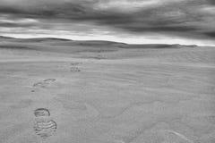 Réservation écologique Saskatchewan de grandes collines de sable photographie stock