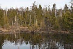 Réservation de biosphère de nature d'état de Visimsky Images stock