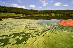 Réservation de cratère de météorite de Tswaing Photographie stock