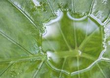 Réserve d'eau Image libre de droits