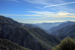 Réserve forestière d'Angeles Photographie stock libre de droits