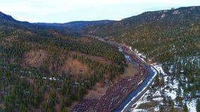 Réserve forestière de brochets Photographie stock libre de droits
