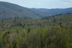 Réserve forestière de Pisgah Photographie stock libre de droits