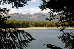 Réserve nationale de Coyhaique, Chili photographie stock