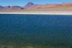 Réserve nationale de flamenco de visibilité directe, Chili Photo libre de droits