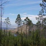 Réserve naturelle Photo libre de droits