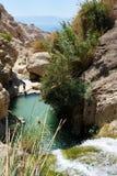 Réserve naturelle d'Ein Gedi (Israël) Photo libre de droits