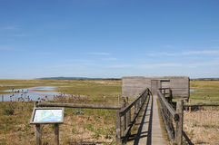 Réserve naturelle de port de Rye Photographie stock libre de droits