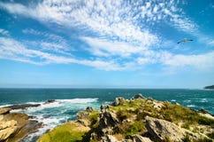 Réserve naturelle de Robberg, itinéraire de jardin, paysage de l'Afrique du Sud Photographie stock