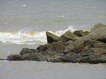 Réserve naturelle locale de Donmouth, nord photos libres de droits