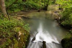 Réserve naturelle, Ry du Pré Delcourt, Chaumont-Gistoux photos stock