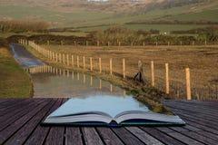 Réservez l'image de paysage de concept de la ruelle inondée de pays dans la ferme Image stock