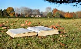 Réservez la lecture en parc dans un jour ensoleillé image libre de droits