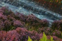 Réservoir de Langsett d'écoulements de l'eau Image libre de droits