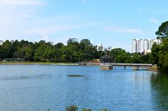 Réservoir de MacRitchie Photo stock