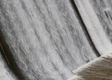 Réservoir de précipitation de barrage d'O'Shaughnessy de l'eau images stock