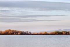 Réservoir solitaire d'arbre dans Loveland le Colorado Photographie stock