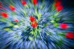 Résumé impressionniste floral lumineux dans la tache floue de bourdonnement photo libre de droits