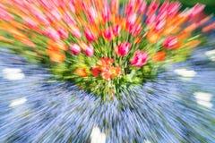 Résumé impressionniste floral lumineux dans la tache floue de bourdonnement photos stock