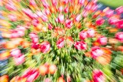 Résumé impressionniste floral lumineux dans la tache floue de bourdonnement photographie stock
