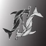 Résumé tiré par la main de deux requins géants de marteau d'isolement sur le fond gris Illustration contour Sch?ma Vue sup?rieure illustration stock